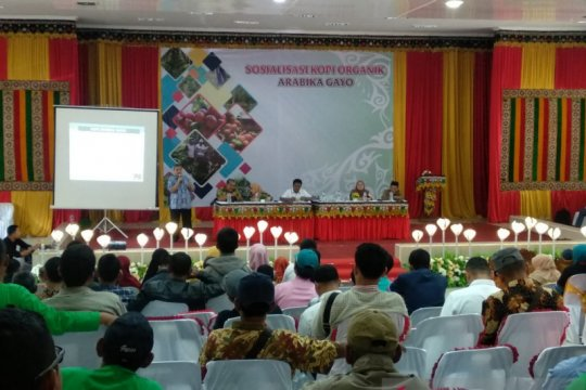 Pemerintah bekali petani Aceh Tengah tentang budidaya kopi organik