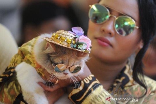 Tips memelihara hewan bagi para pekerja