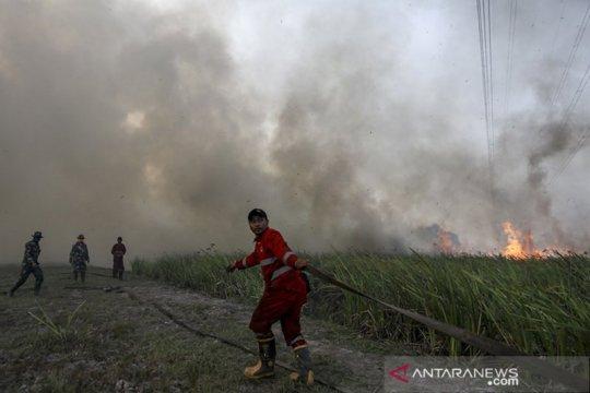 BNPB jadikan Kabupaten Ogan Ilir percontohan pencegahan karhutla