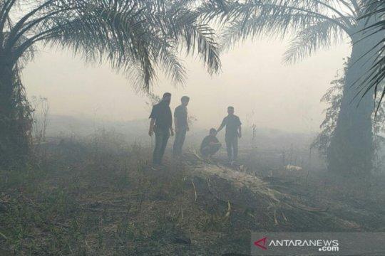 Karhutla Riau habiskan anggaran BNPB Rp468 miliar