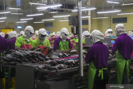 KKP sebut peluang investasi di sektor perikanan semakin luas