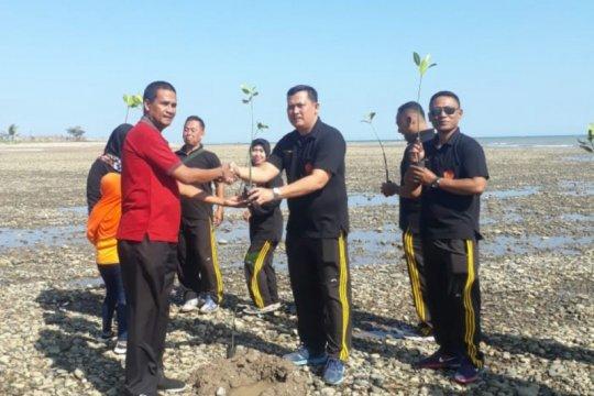 Di Pantai Sulamanda-NTT, warga desa menanam ribuan pohon bakau