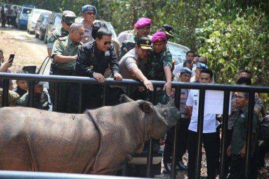 Arinal dan komitmen lindungi badak sumatera