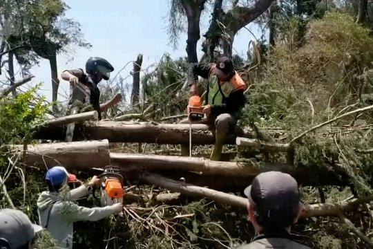 Angin kencang putus jalur lalu lintas di Pangalengan