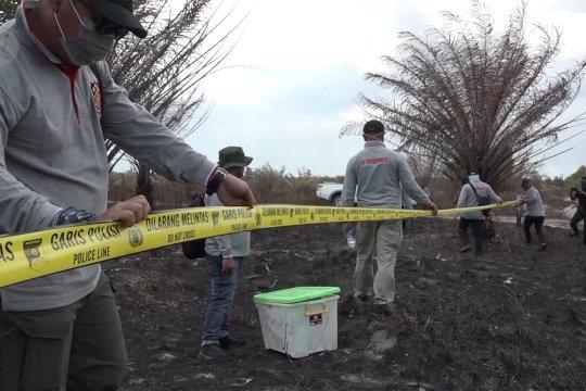 Polda Kalsel selidiki 39 pelaku pembakar lahan