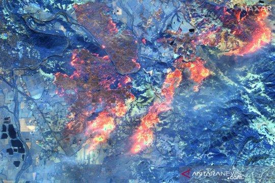 Kebakaran hutan dan lahan di California semakin meluas