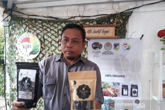 KPH Sivia Patuju kembangkan kopi robusta cegah deforestasi