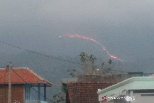BBKSDA identifikasi  kebakaran hutan di Gunung Guntur Garut