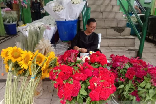 Bunga matahari paling diminati di Pasar Bunga Rawa Belong