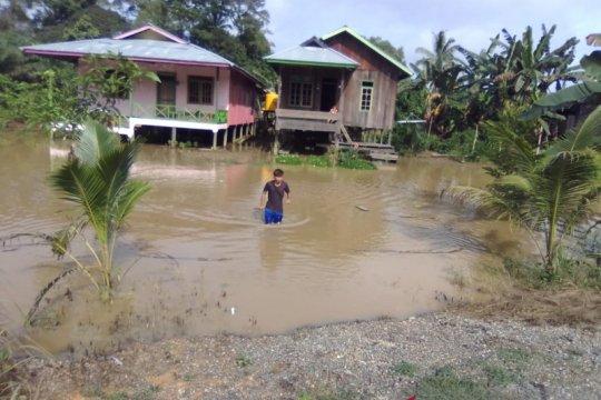 Perbaiki resapan air, Pemkab Nunukan tanami pohon di hulu embung