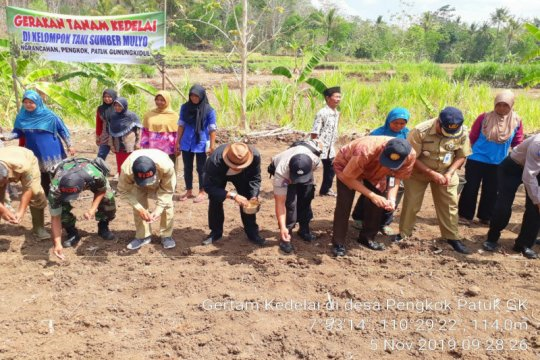 Petani Gunung Kidul diimbau gunakan Bio Soy dongkrak produksi kedelai