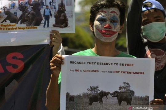 Aksi tolak eksploitasi gajah Way Kambas Lampung