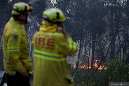 Petugas pemadam Australia berjuang hadapi kebakaran