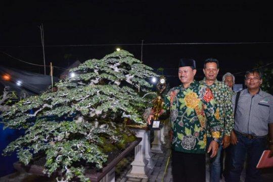Madiun fasilitasi Festival Bonsai 2019 peringati Hari Pahlawan