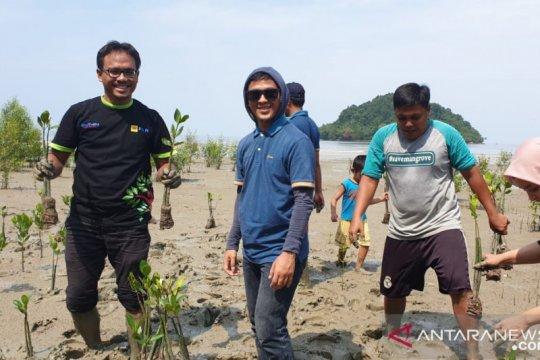 Ratusan mangrove di Mempawah ditanam bersama PLN-MMC jaga lingkungan