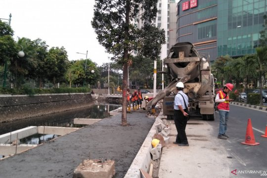 Pohon tabebuya dan pule akan hiasi trotoar Kantor Wali Kota Jakbar