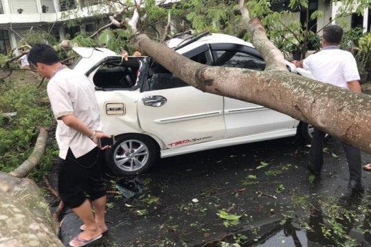 Puluhan pohon tumbang di pusat pemerintahan Banten akibat hujan angin