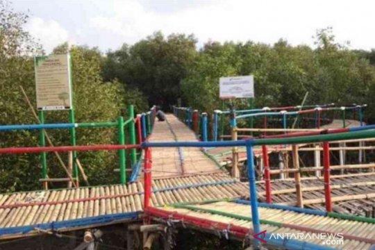 Pertamina kembalikan kampung abrasi ke permukaan