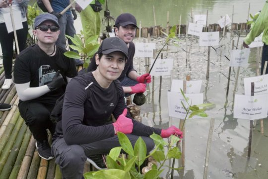 Band poprock Wolftank pun ikut tanam mangrove