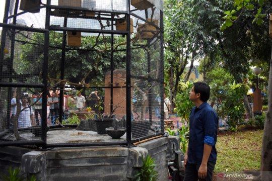 Lucky Hakim apresiasi konservasi burung di Ancol