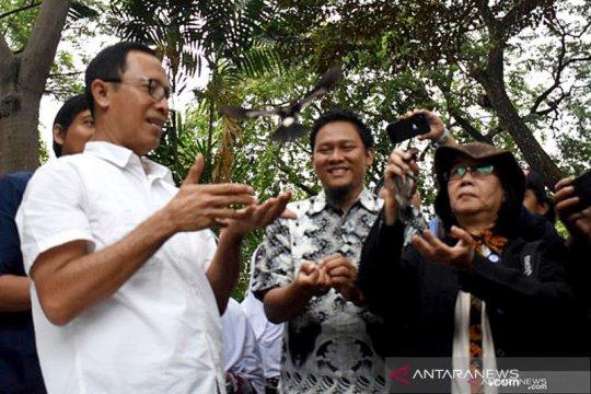 Ancol siapkan Rp30 miliar untuk bangun wahana konservasi burung