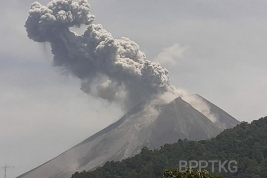 Merapi keluarkan awan panas letusan setinggi 1.000 meter