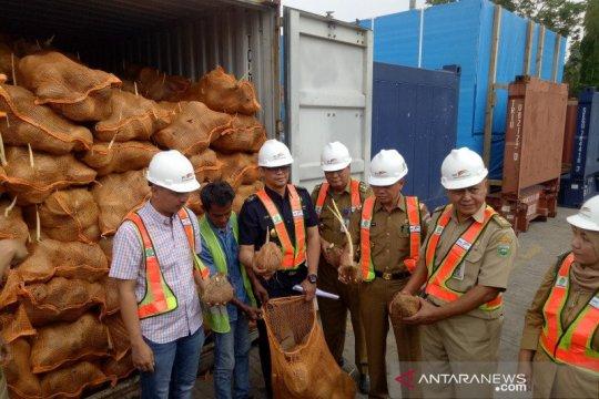 Reimpor kelapa Sumsel perlu diselidiki cegah dampak lanjutan