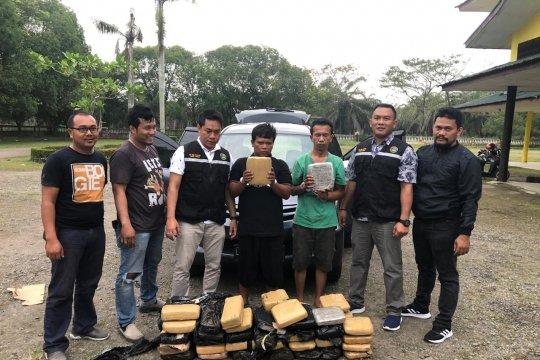Dua warga Jawa Barat bawa 58 kg ganja ditangkap Polres Langkat