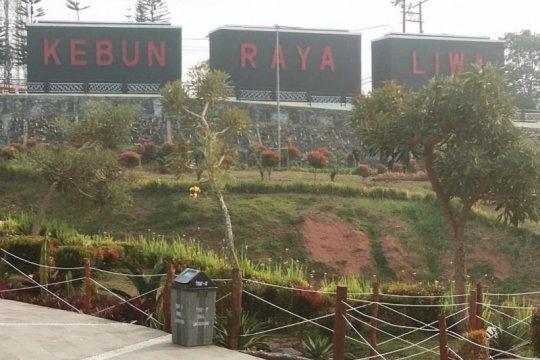 Kebun Raya Liwa, etalase hutan hujan tropis TNBBS di Lampung