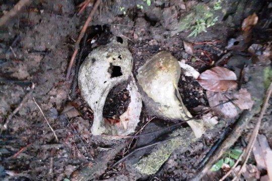 Kemarin, penanganan hepatitis A hingga  temuan situs Triton di Papua