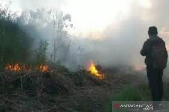 Kabut asap menyelimuti sebagian wilayah Kolaka Timur, Sultra