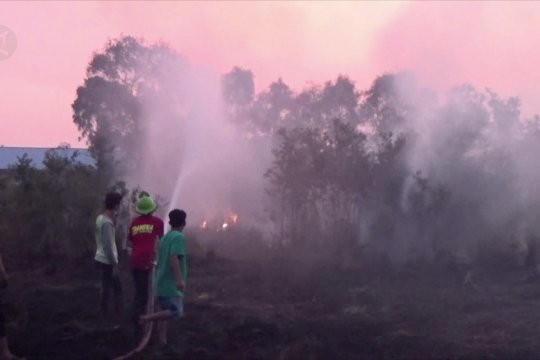Petugas kesulitan atasi karhutla di 2 desa di Barito Kuala