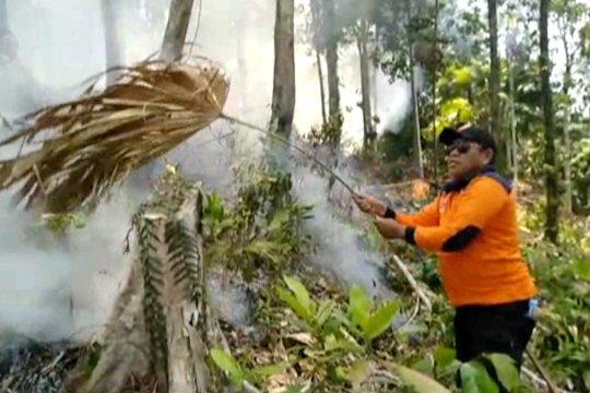 Satu hektare hutan di Halmahera Tengah terbakar