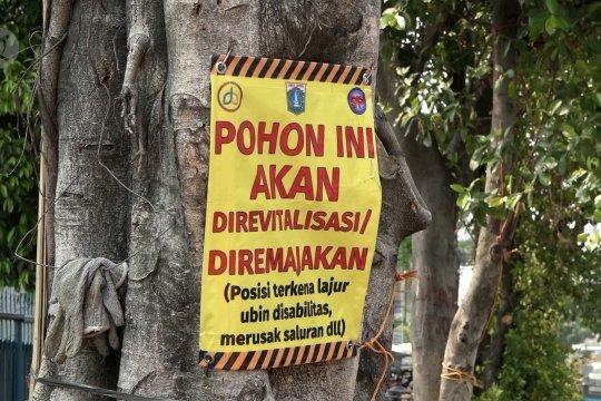 Pemprov DKI Jakarta akan lanjut tebang pohon-pohon untuk revitalisasi trotoar