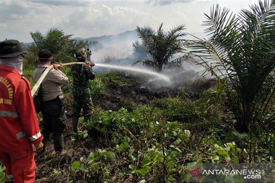 Gapki minta pemerintah awasi lahan tak bertuan cegah kebakaran hutan