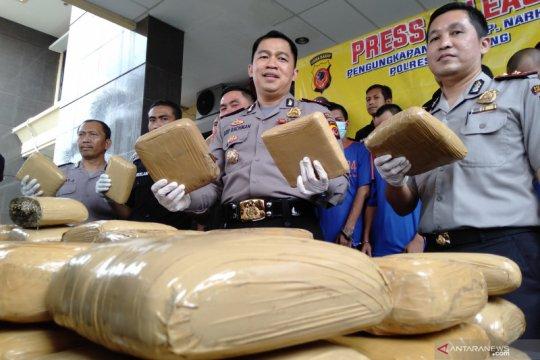 Polisi Karawang sita 80 kilogram ganja dari empat pengedar