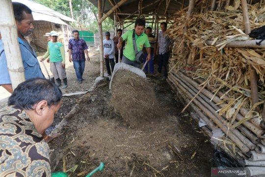 Pemerintah beri bantuan pengolah pupuk organik ke petani, ini sebabnya