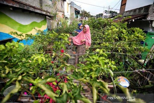 Pemkot Bandung dorong pertanian urban demi kendalikan inflasi