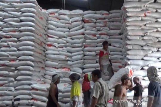 Ada 500 ton beras tak layak konsumsi di Bulog Tanjungpinang