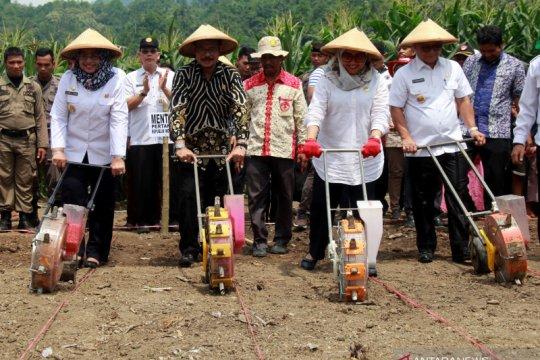 Kunjungan kerja Menteri Pertanian ke Sulawesi Barat