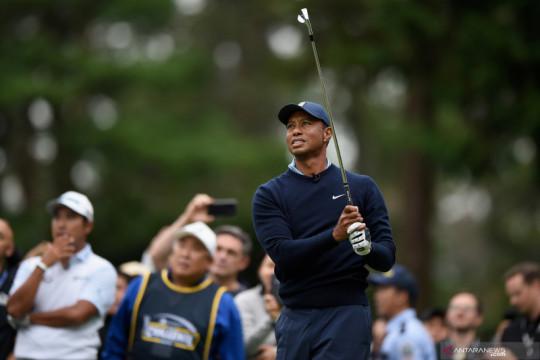 Putter golf milik Tiger Woods terjual Rp5,7 miliar di pelelangan