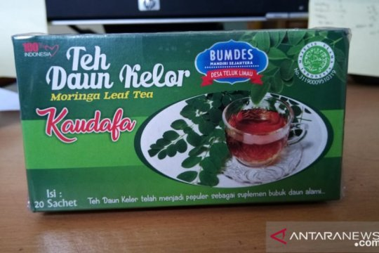 UKM Bangka Barat kembangkan teh daun kelor
