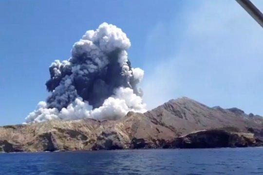 """""""Tak ada tanda kehidupan"""" di pulau gunung meletus Selandia Baru"""