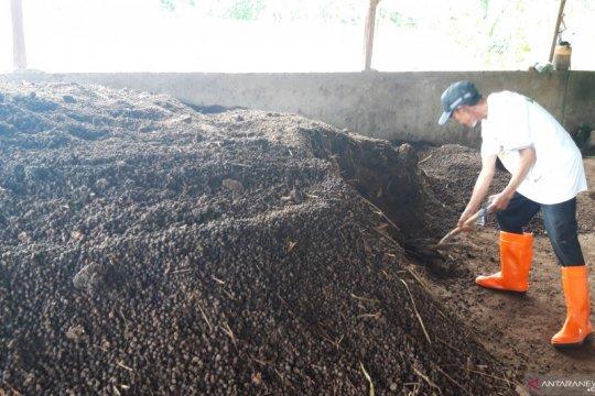 300 karung pupuk organik per hari diproduksi  Lumbung Ternak ACT
