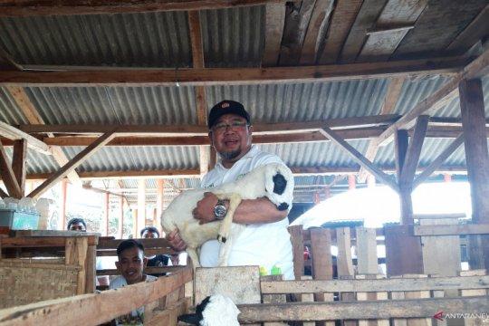 ACT luncurkan lumbung ternak kembalikan kejayaan agraris Indonesia