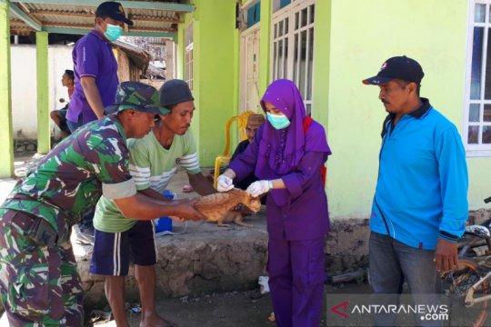 Kasus gigitan anjing di Gorontalo Utara positif rabies