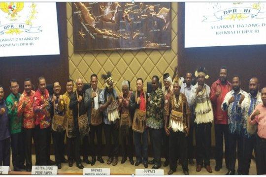 Pengamat nilai wacana pemekaran Papua harus dalam konteks Otsus
