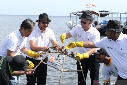 TN Bali Barat ditanami 1.000 magrove dan transplantasi terumbu karang