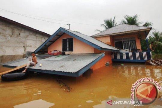 Kurangi kerugian, prediksi banjir lebih cermat di Riau, kata Walhi