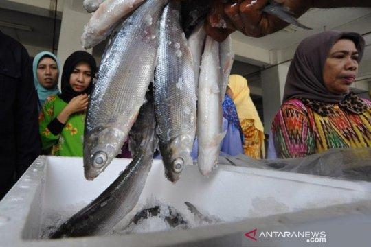 KKP salurkan bantuan Rp4,52 miliar ke UMKM perikanan di Jawa Tengah